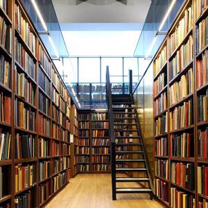 Библиотеки Луги