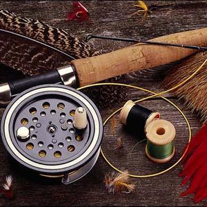 Охотничьи и рыболовные магазины Луги